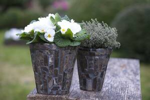 Decorate a planter with mosaic stones
